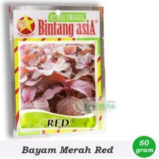 Benih-Bibit Bayam Merah Red (Bintang Asia)
