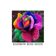 50 Benih Bibit Biji Bunga Mawar Pelangi Rainbow Rose Seeds