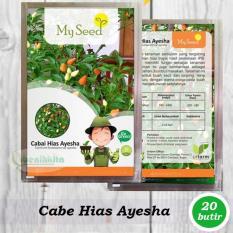 Benih-Bibit Cabe Hias Pelangi Ayesha (My Seed)