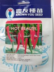 Benih / Bibit Cabe Keriting Besar ( Hot Beauty )