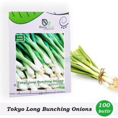 Benih-Bibit Daun Bawang Tokyo Long Bunching (Haira Seed)