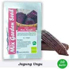 Benih-Bibit Jagung Ungu (Mix Garden)