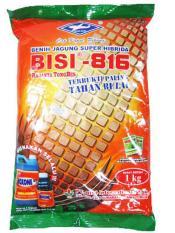 Benih Jagung Super Unggul Manis Hibrida F1 BISI - 816 - 1KG