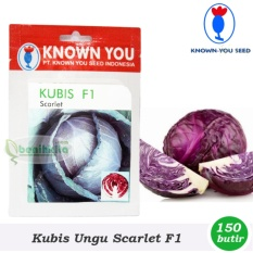 Benih/Bibit Kubis Ungu Scarlet F1 (Known You Seed)