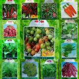 Harga 32 Macam Benih Hydroponik 5 Free Online