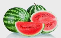 Rp 17.000 berisi 10 biji benih buah semangka merahIDR17000