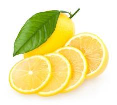 berisi 5 biji benih / bibit buah lemon import