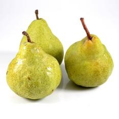 berisi 5 biji benih buah pear mixIDR19800. Rp 19.800