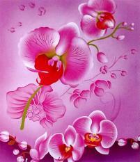 BEST SELLER!! Selimut Internal - Orchidseprai kintakun / seprai bonita / seprai my love / seprai polos / seprai murah / seprai rumbai / seprai california / seprai karakter