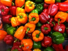 Bibit / Benih Sayur Paprika Mix colour Grow In Your Yard
