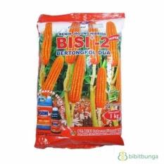 Bibit Bunga Benih Kapal Terbang Jagung BISI 2 – 1 Kg