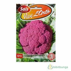 Bibit Bunga Benih Kembang Kol Ungu (Violet Cauliflower) 1000 Biji – Sais Seeds