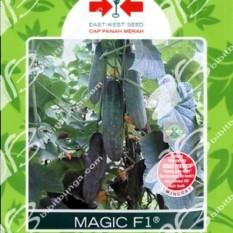 Bibit Bunga Benih Panah Merah Mentimun Magic F1 5 Pcs