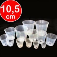 Spesifikasi Bibit Bunga Pot Anggrek Plastik Bening 10 5 Cm 50 Pcs Beserta Harganya