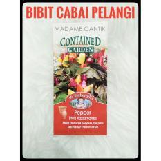 BIBIT CABE / BENIH Cabai Pelangi/ Bolivi*n Rainbow Pepper bell