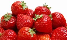 biji benih buah strawberry giant berisi 20 butir