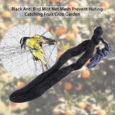 Black Anti Burung Rusak Net Mesh Mencegah Huting Catching Tanaman Buah Garden 15x3 M-Intl By Beautytop.