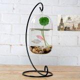 Beli Bolehdeals Gantung Kaca Vas Bunga Botol Hidroponik Dekorasi Rumah L Wadah Terarium Pake Kartu Kredit