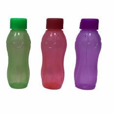 Botol Minum Air Creative Kettle 350 Ml - Warna RandomIDR16700. Rp 18.500