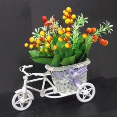 Beli Buket Bunga Berries Vas Sepeda Murah Flower Dengan Harga Terjangkau