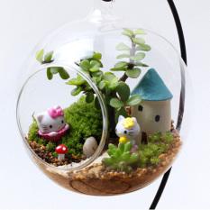 Harga Clear Round Kaca Vas Gantung Botol Terarium Hidroponik Dekorasi Dengan Holder Termahal