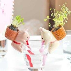 Jual Cute Indoor Home Garden Office Watering Flowerpot Cute Animal Pot With Stra Intl Branded Original