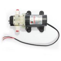 DC 12V Diaphragm Water Pump 3.2L/Min 25w Automatic Switch (Intl) - Intl