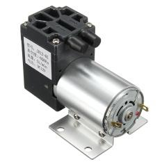 Jual Dc12 V Mini Vacuum Pump Negatif Tekanan Suction Pompa 5 L Min 120Kpa With Pemegang Intl Original