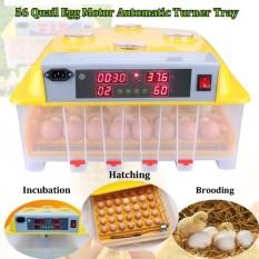 Digital 110 V 56 Telur Mesin Penetas Otomatis Hatch Mengubah Ayam Burung Puyuh Unggas-Internasional