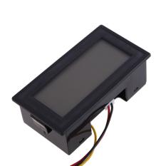 Digital Voltmeter LCD DC 0-300 V