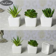 Beli Esogoal Set Dari 4 Modern Keramik Putih Mini Pot Tanaman Buatan Buatan Lengkap