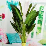 Jual Evergreen Tanaman Semak Pohon Hati Pot Bunga Buatan Rumah Seperti Menampilkan 25 Lembar Daun Tiongkok Murah