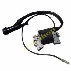 Ewo - Iginition Coil /CDI Mesin Gx160 /Gx200 Untuk Busi Mesin Honda Dan China