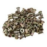 Spesifikasi Kepala Datar Keling Nut M4 Set 100 Gold