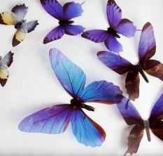 Rp 61.000. Funlife Transparan Butterfly Wall Stiker Transparan PVC Dekoratif 3D Warna Model Di Eropa dan Amerika ...