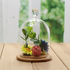 Harga Glass Display Cloche Bell Jar Dome Bunga Immortal Pelestarian Dengan Basis Kayu