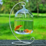 Berapa Harga Hydroponic Wall Hanging Bubble Aquarium Ikan Kaca Diy Pot Vas Tanaman Dekorasi Rumah Putih Internasional Oem Di Tiongkok