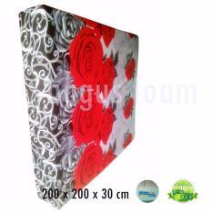 Inoac Kasur Busa JUmbo EON D 23 Uk 200 x 200 x 30 cm