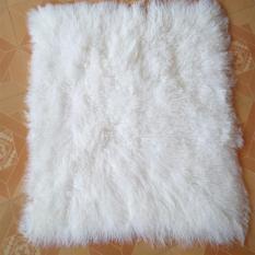 Kain Bulu Putih Karpet Bulu Korea