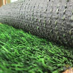 Karpet rumput sintetis dual color