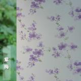 Beli Stiker Stiker Kaca Kartun Tembus Cahaya Buram Kredit Tiongkok