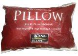 Review Toko Kingkoil Bantal Hollow Fibre