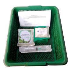 Beli Barang Kit Kangkung Hidroponik Online