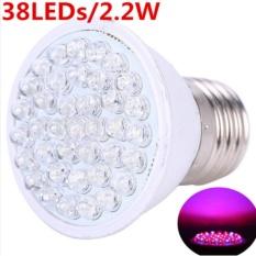 Harga Lampu Led Grow 38 Led 2 2W Hydroponic Plant Grow Growth Light Bulb Lampu Tumbuh Hidroponik Lampu Tanaman Lampu Hias Lampu Untuk Tumbuhan Hidroponik Lampu Bagus Lampu Murah El Asli