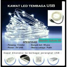 Lampu LED Hias Dekorasi - Lampu LED Kawat Tembaga White Putih - USB DC5V - Panjang 5m
