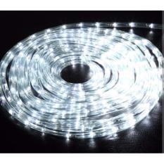 Lampu LED Selang / Rope Light / Lampu Dekorasi 10m PUTIH