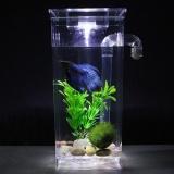 Beli Lazy Fish Tank Desktop Kecil Aquarium Bucket Fish Tank Mini Goldfish Tank Plastik Kreatif Ekologis Tangki Ikan Untuk Membeli Ikan Tank Square Cylinder Intl Oem Online