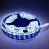 Ulasan Lengkap Led Strip 3528 Ip 44 Dilindungi Gel Anti Air Indoor Outdoor Panjang 5 Meter