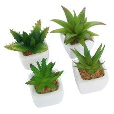 Toko Leegoal Set Dari 4 Modern Mini Keramik Putih Aloe Pot Tanaman Buatan Buatan Intl Dekat Sini
