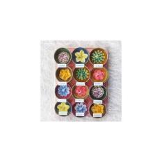 Lilin Aromaterapi Bentuk Bunga Isi 12 Pcs
